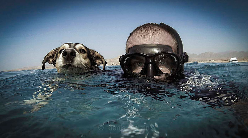 1° classificato Pelfie categoria cani: Denis Zorzin