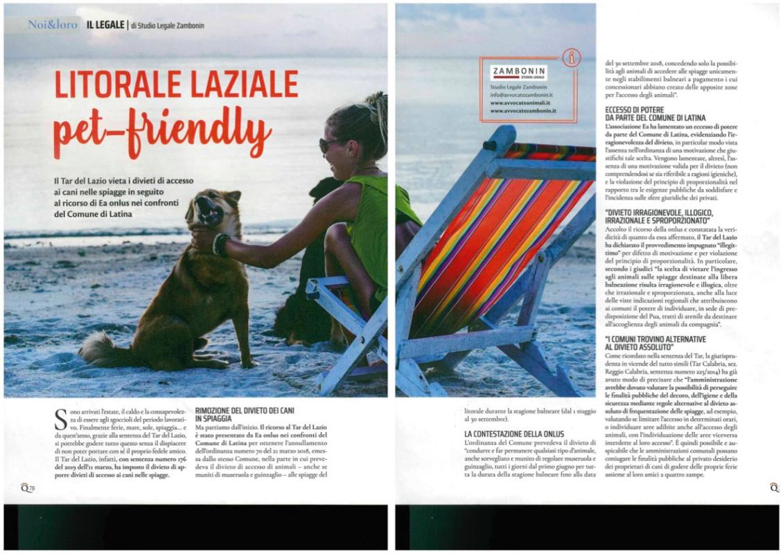 divieto dei cani in spiaggia quattro zampe agosto 2019